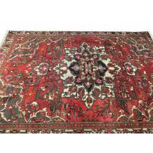 305 x 404 Cream Border, Red, Blue Bakhtiar Persian Rug